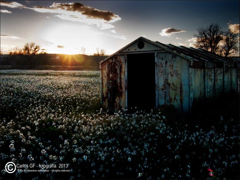 Caseta de chapa abandonada